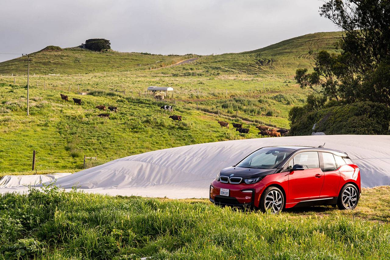 From pasture to powering a BMW or MINI. - Image 1
